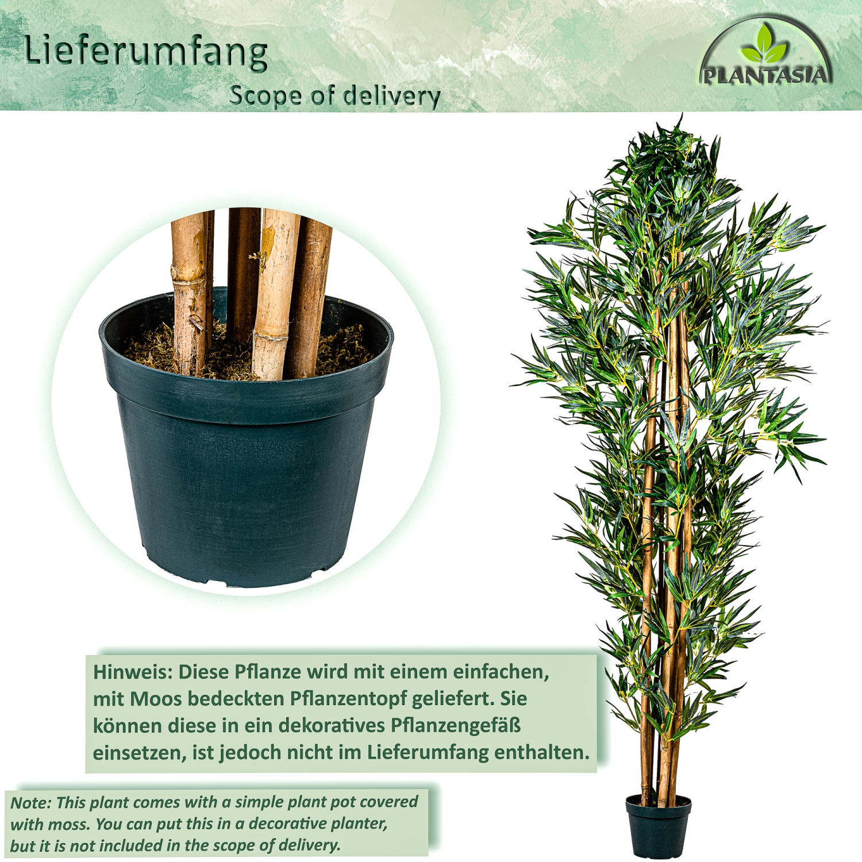 lit en bambou tronc en bois v ritable arbre artificiel. Black Bedroom Furniture Sets. Home Design Ideas
