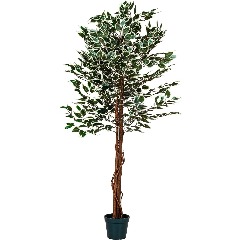 gr ner ficus baum echtholzstamm kunstbaum kunstpflanze dekobaum 190 cm. Black Bedroom Furniture Sets. Home Design Ideas