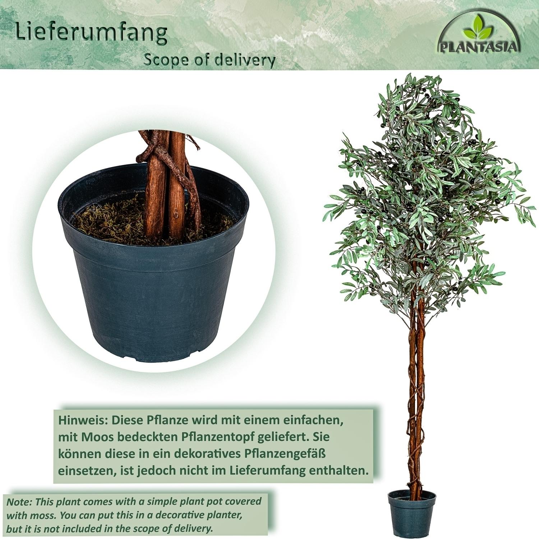 plantasia olivenbaum 180cm kunstbaum kunstpflanze zimmerpflanze ebay. Black Bedroom Furniture Sets. Home Design Ideas
